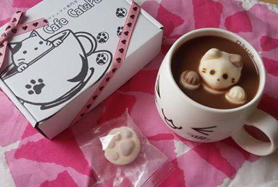 Süße Kätzchen im Kakao
